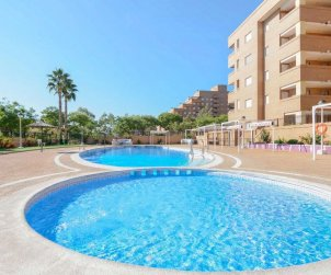 Apartment  in Oropesa del Mar  for 4 people with shared pool p0