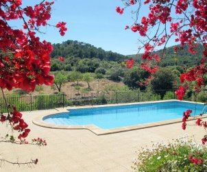 House   Cala d'Or 6 persons - private pool p2