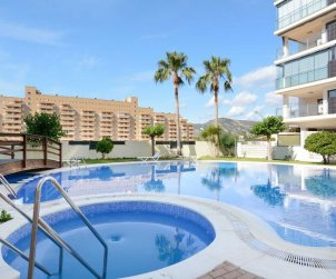 Apartment  in Oropesa del Mar  for 4 people with communal swimming pool  p1