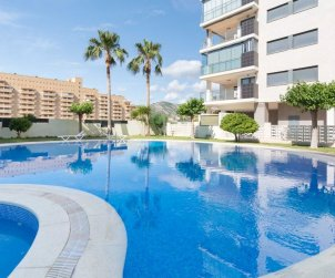 Apartment  in Oropesa del Mar  for 4 people with communal swimming pool  p0