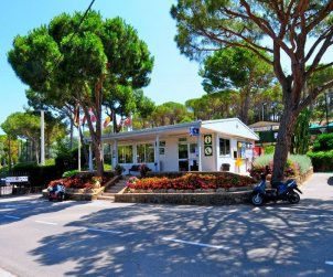 Camping mobile home   Platja d'Aro 2 persons - comunal pool p2