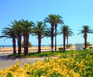Flat   Empuriabrava 5 persons - comunal pool p1