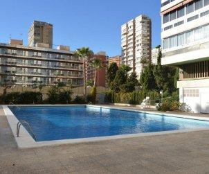 Flat   Benidorm 6 persons - comunal pool p1