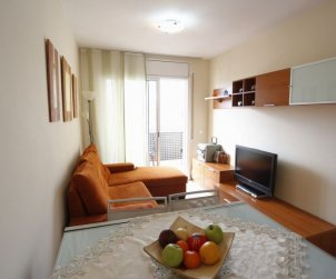 Flat   Ametlla de Mar 5 persons - dishwaher p1