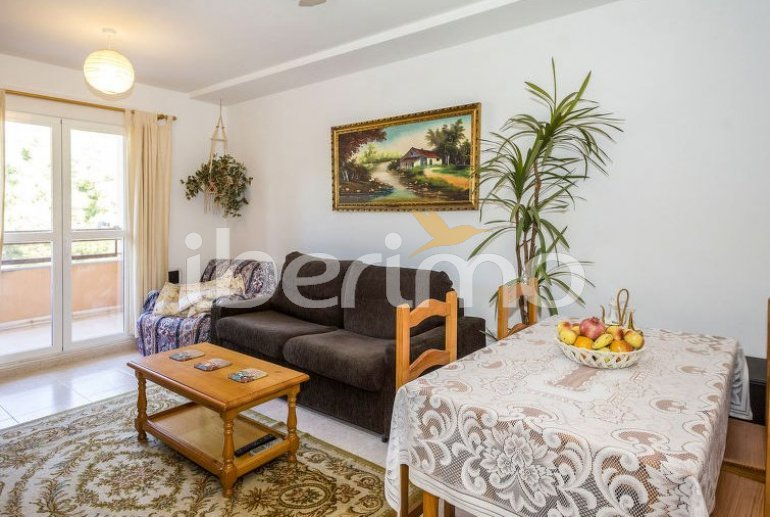 Flat   Alcoceber 4 persons - comunal pool p11