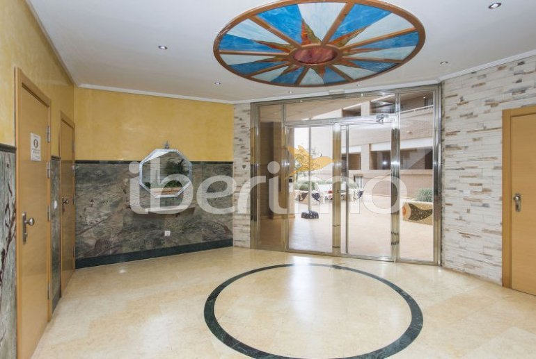 Flat   Oropesa del Mar 8 persons - comunal pool p4