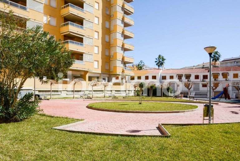 Flat   Oropesa del Mar 6 persons - comunal pool p39