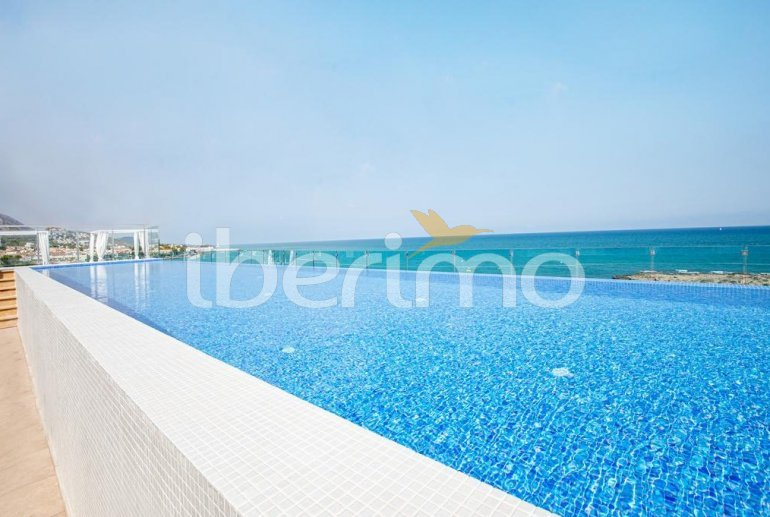 Apartment  in Alcossebre  for 4 people in a hotel complex with shared swimming pool on the seafront and adapted for reduced mobility  p1