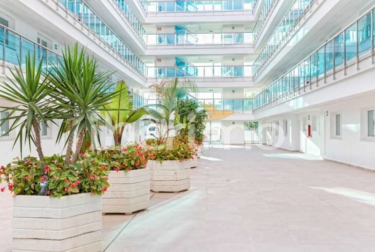 Apartment  in Alcossebre  for 5 people in a hotel complex with communal pool, large terrace and seafront  p37