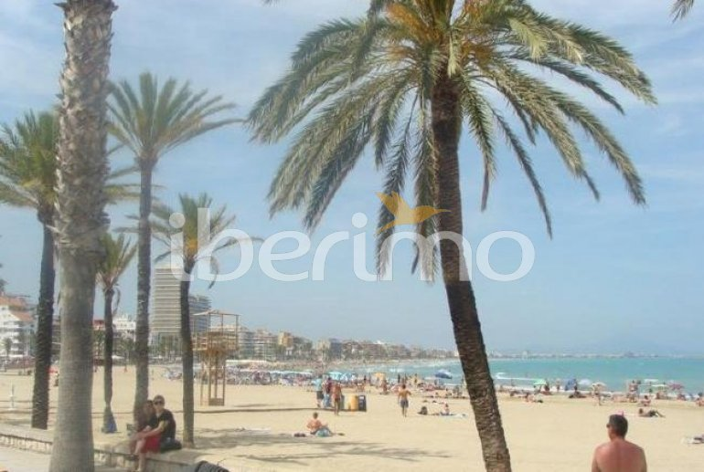 Flat   Peniscola 6 persons - comunal pool and sea view p9