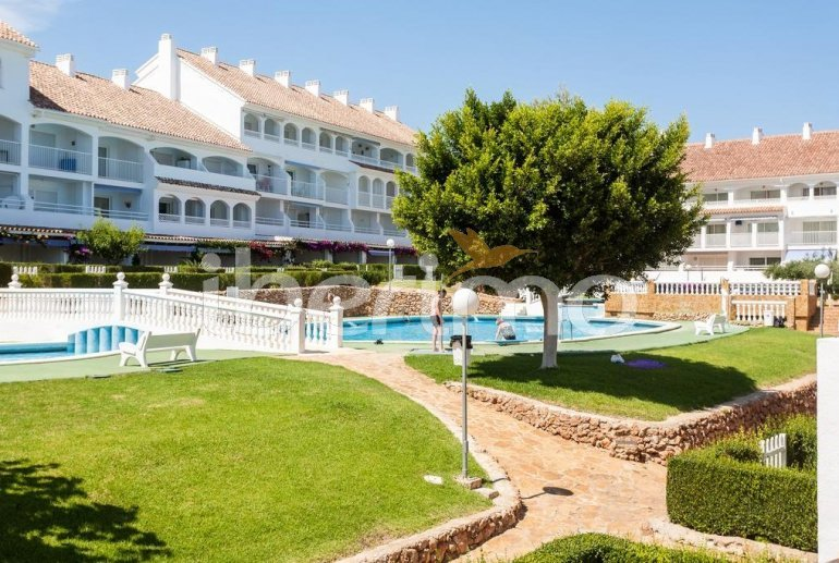Flat   Alcoceber 4 persons - comunal pool and near sea p3