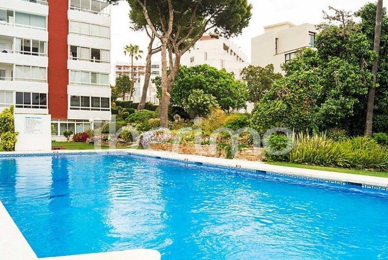 Flat   Benalmadena 4 persons - comunal pool p3
