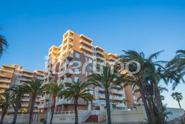 Flat   La Manga del Mar Menor 4 persons - comunal pool p4