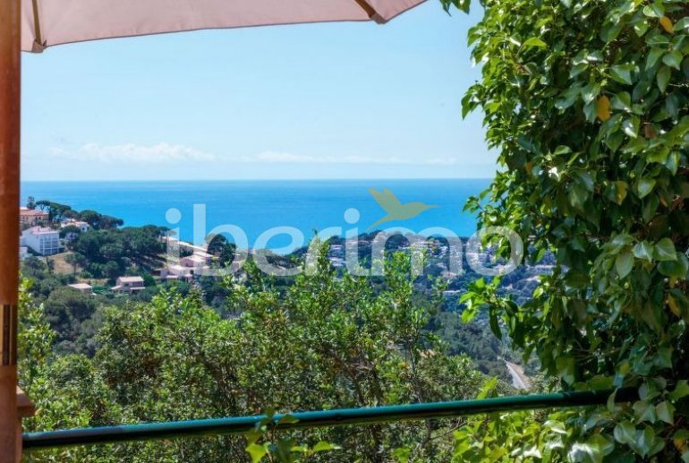 House   Lloret del Mar 10 persons - private pool p7