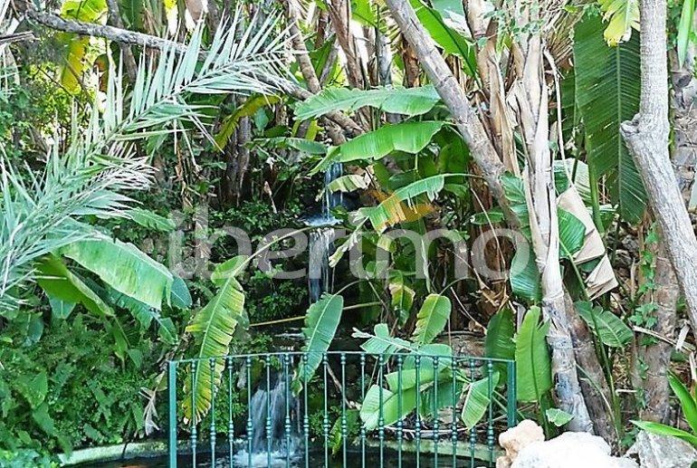 Flat   Benalmadena 6 persons - comunal pool p1