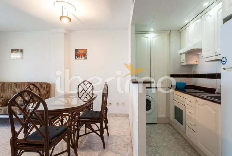 Flat   Alcoceber 6 persons - comunal pool p5