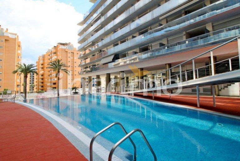 Flat   Benidorm 4 persons - comunal pool p4
