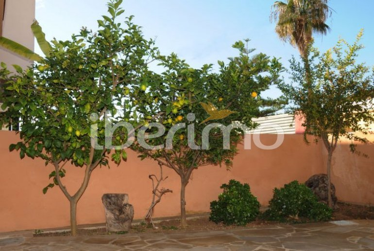 House   Vinaros 10 persons - private pool p21