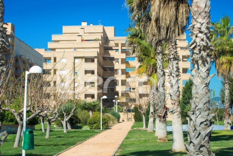 House   Oropesa del Mar 6 persons - comunal pool p4